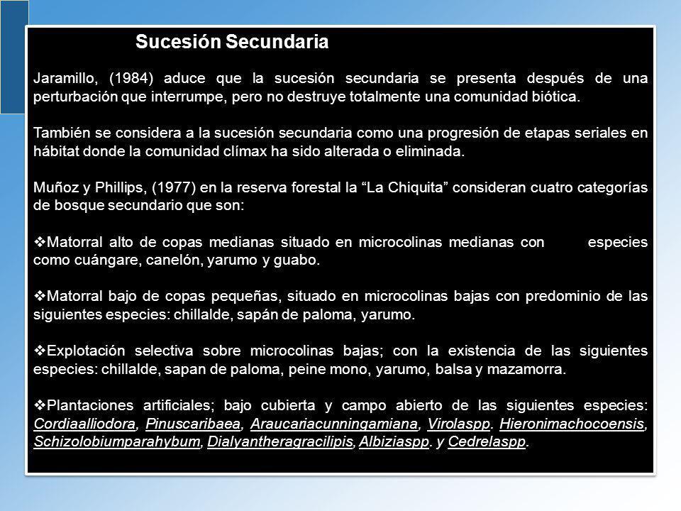 Sucesión Secundaria