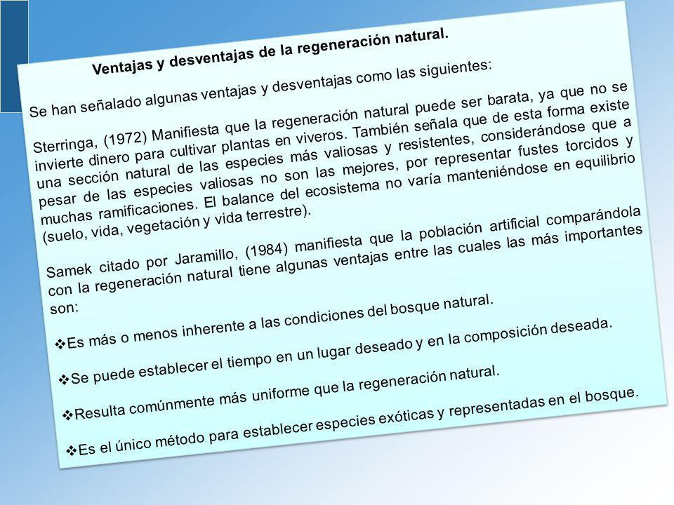 Ventajas y desventajas de la regeneración natural.