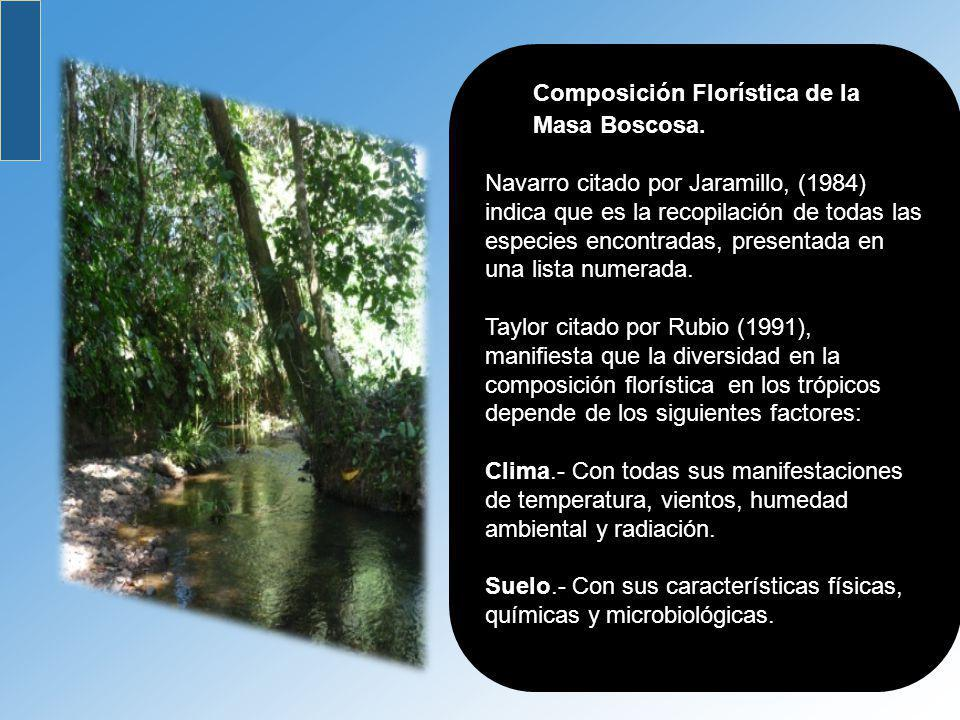 Composición Florística de la Masa Boscosa.