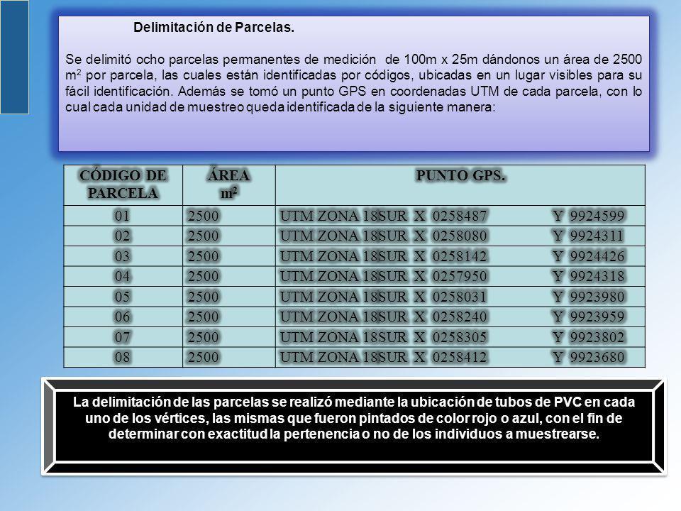 CÓDIGO DE PARCELA m2 PUNTO GPS.