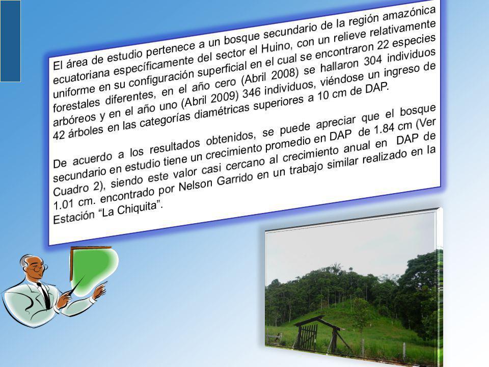 El área de estudio pertenece a un bosque secundario de la región amazónica ecuatoriana específicamente del sector el Huino, con un relieve relativamente uniforme en su configuración superficial en el cual se encontraron 22 especies forestales diferentes, en el año cero (Abril 2008) se hallaron 304 individuos arbóreos y en el año uno (Abril 2009) 346 individuos, viéndose un ingreso de 42 árboles en las categorías diamétricas superiores a 10 cm de DAP.
