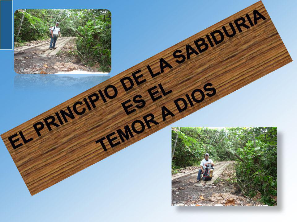 EL PRINCIPIO DE LA SABIDURIA