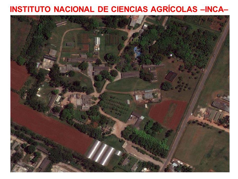 INSTITUTO NACIONAL DE CIENCIAS AGRÍCOLAS –INCA–