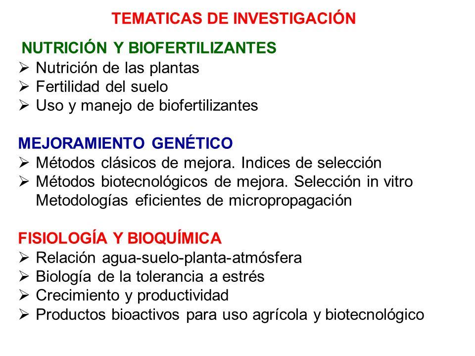 TEMATICAS DE INVESTIGACIÓN
