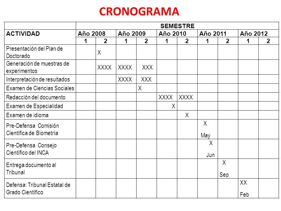 CRONOGRAMA SEMESTRE ACTIVIDAD Año 2008 Año 2009 Año 2010 Año 2011