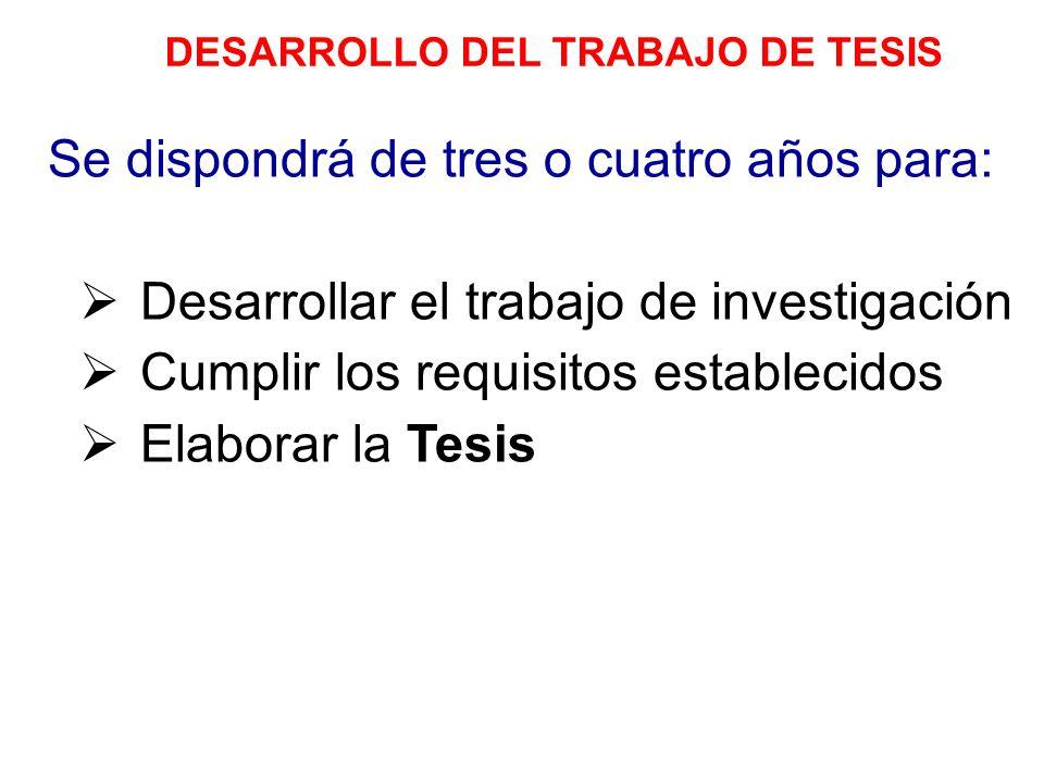 DESARROLLO DEL TRABAJO DE TESIS