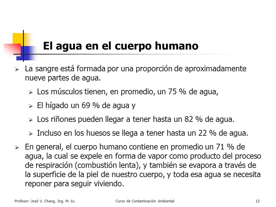 El agua en el cuerpo humano