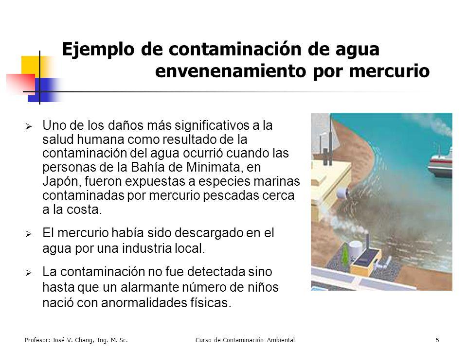 Ejemplo de contaminación de agua envenenamiento por mercurio