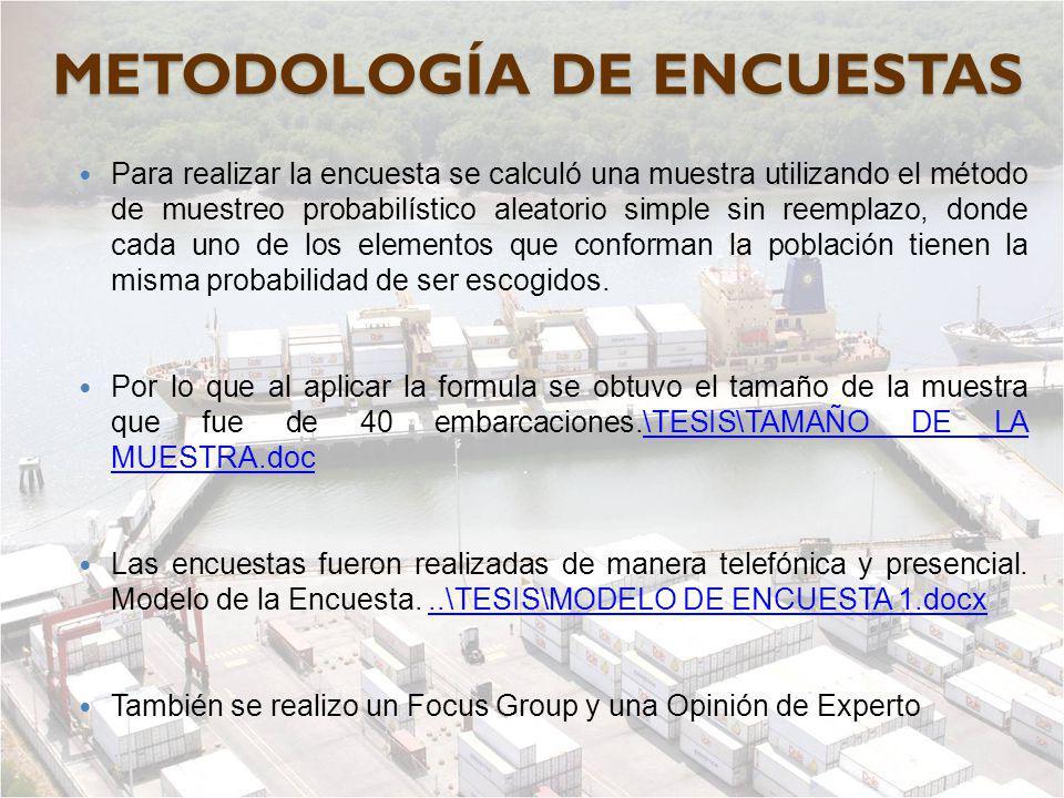 METODOLOGÍA DE ENCUESTAS
