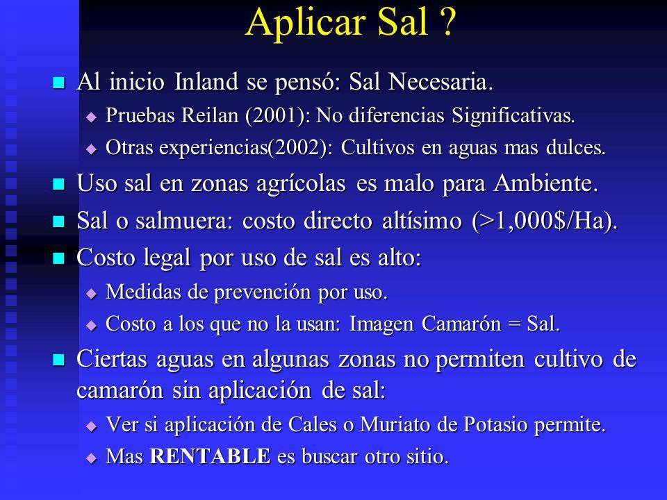 Aplicar Sal Al inicio Inland se pensó: Sal Necesaria.