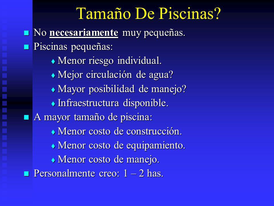 Tamaño De Piscinas No necesariamente muy pequeñas. Piscinas pequeñas: