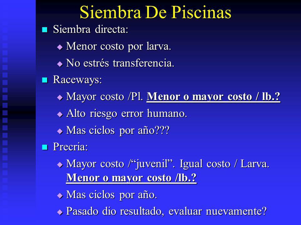 Siembra De Piscinas Siembra directa: Menor costo por larva.