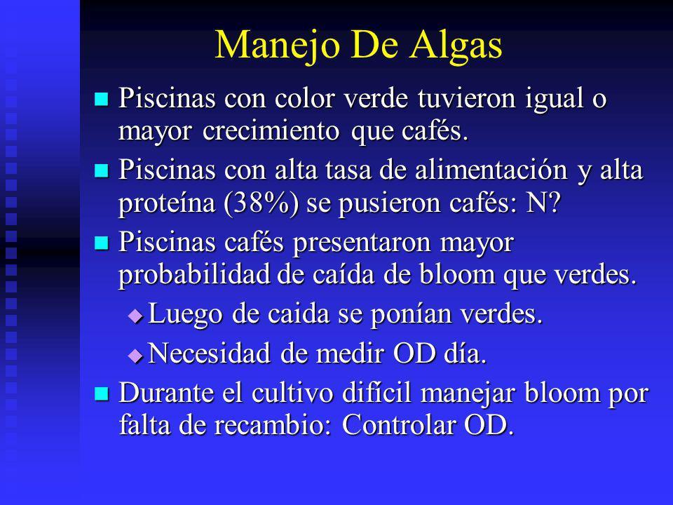 Manejo De Algas Piscinas con color verde tuvieron igual o mayor crecimiento que cafés.