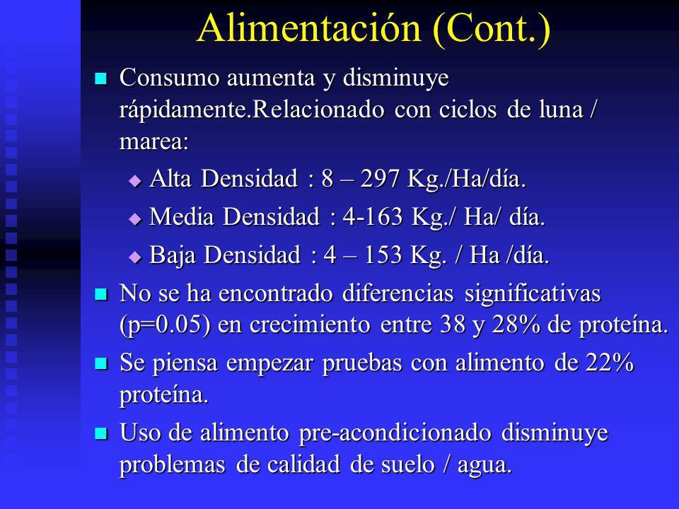 Alimentación (Cont.) Consumo aumenta y disminuye rápidamente.Relacionado con ciclos de luna / marea: