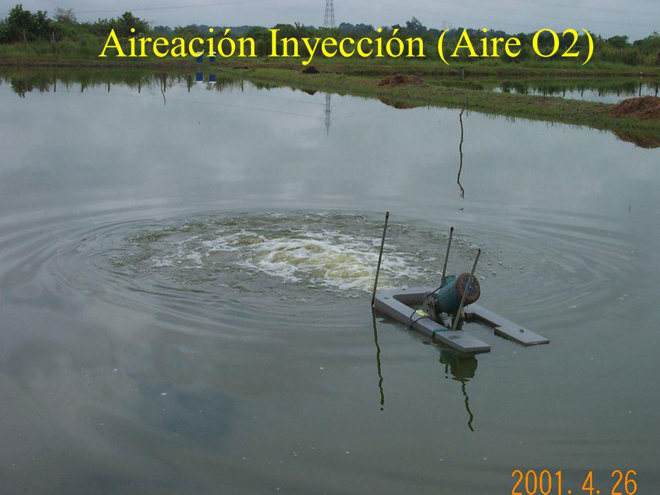 Aireación Inyección (Aire O2)