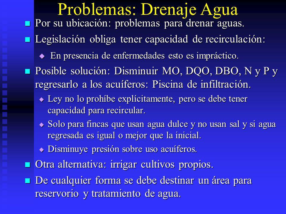 Problemas: Drenaje Agua