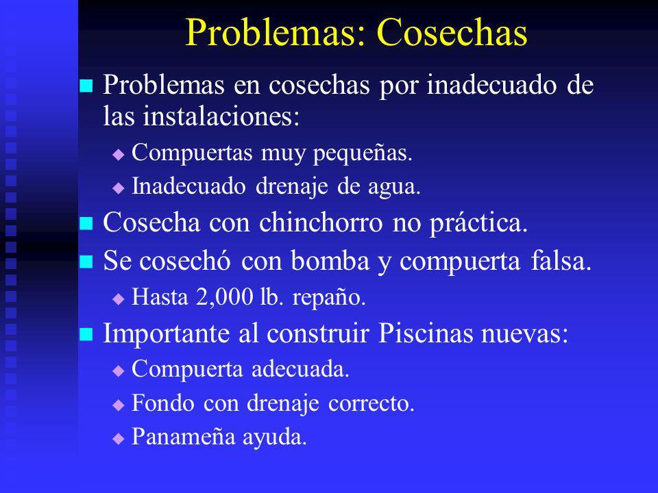 Problemas: Cosechas Problemas en cosechas por inadecuado de las instalaciones: Compuertas muy pequeñas.