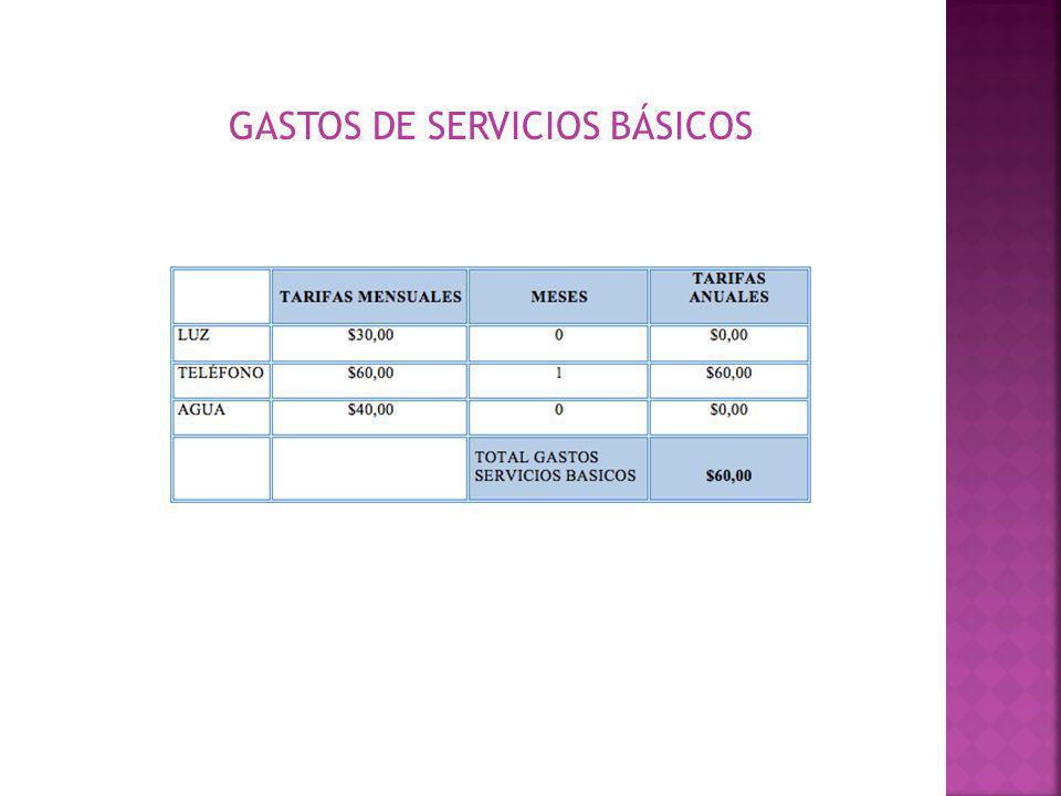 GASTOS DE SERVICIOS BÁSICOS