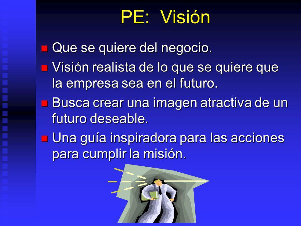 PE: Visión Que se quiere del negocio.