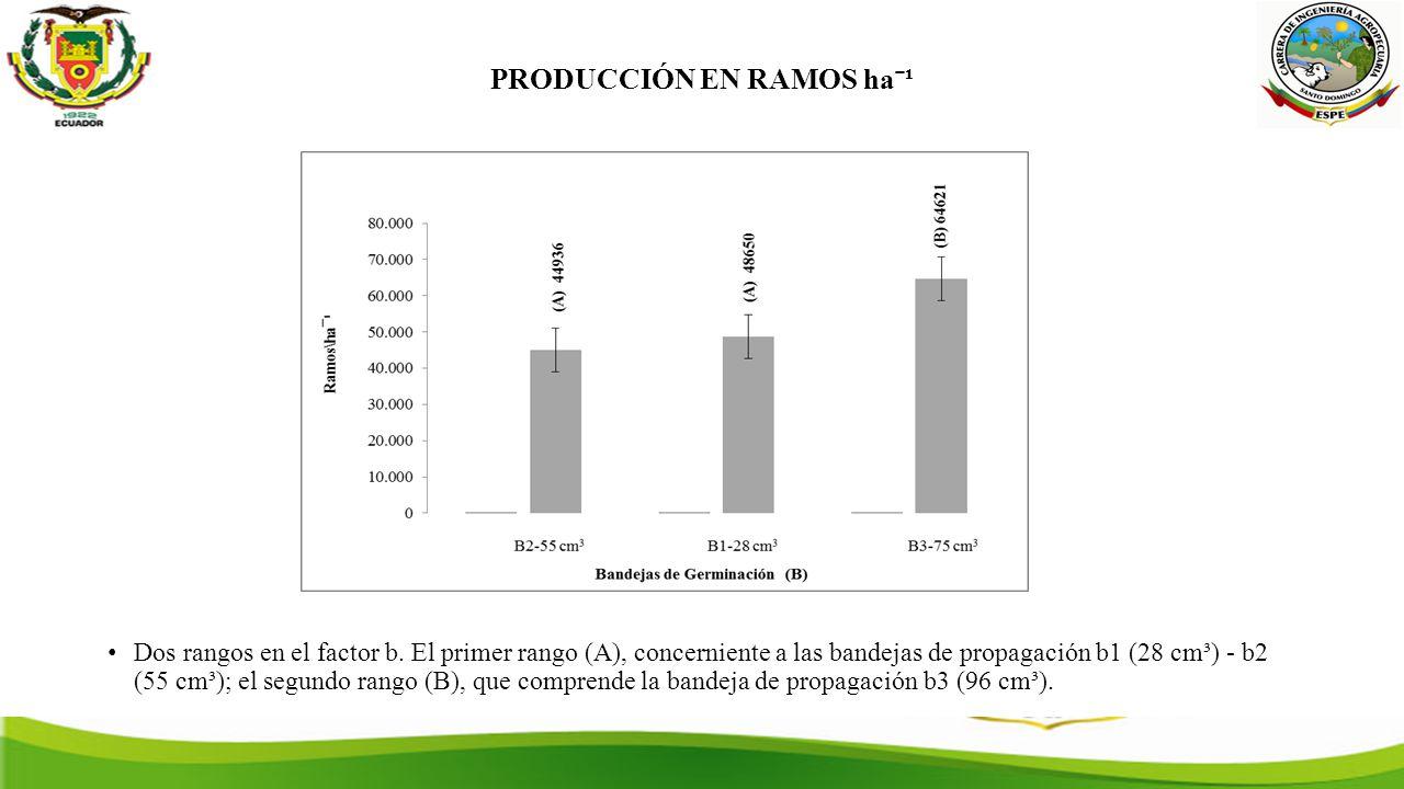 PRODUCCIÓN EN RAMOS haˉ¹