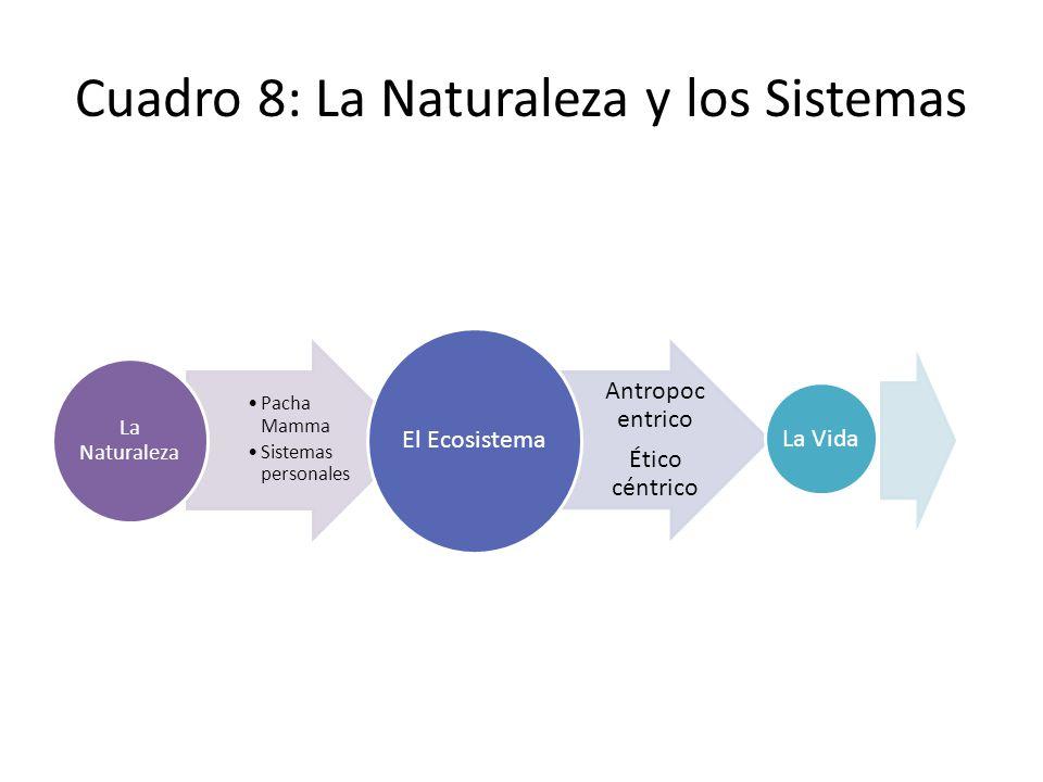 Cuadro 8: La Naturaleza y los Sistemas