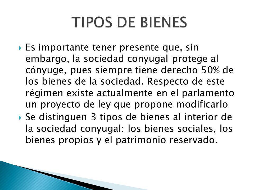 TIPOS DE BIENES