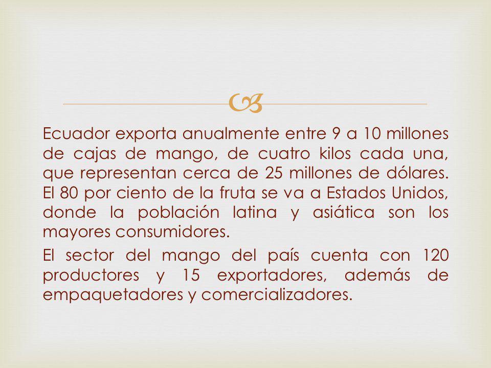 Ecuador exporta anualmente entre 9 a 10 millones de cajas de mango, de cuatro kilos cada una, que representan cerca de 25 millones de dólares.