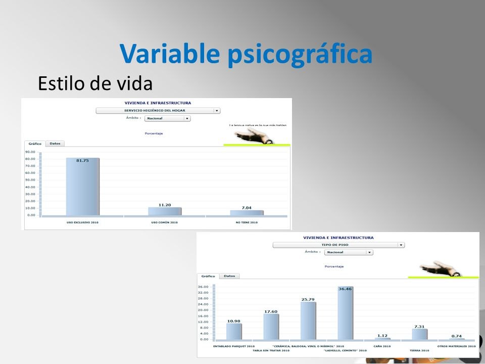 Variable psicográfica