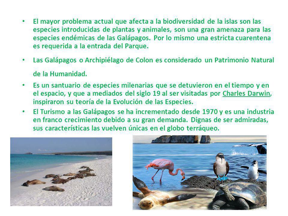 El mayor problema actual que afecta a la biodiversidad de la islas son las especies introducidas de plantas y animales, son una gran amenaza para las especies endémicas de las Galápagos. Por lo mismo una estricta cuarentena es requerida a la entrada del Parque.