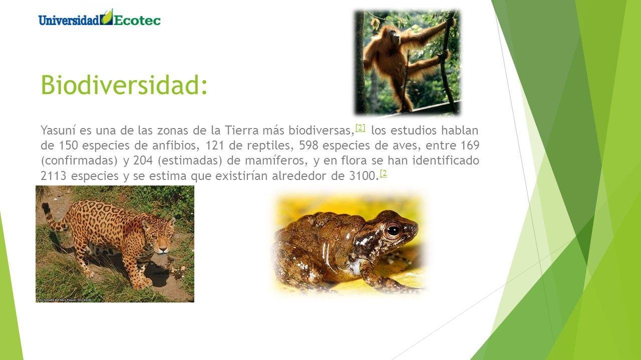 Biodiversidad: