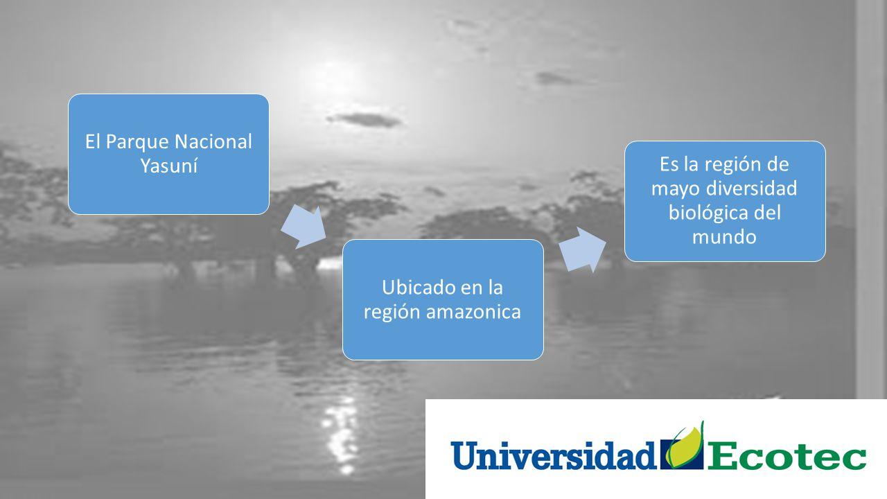 El Parque Nacional Yasuní Ubicado en la región amazonica
