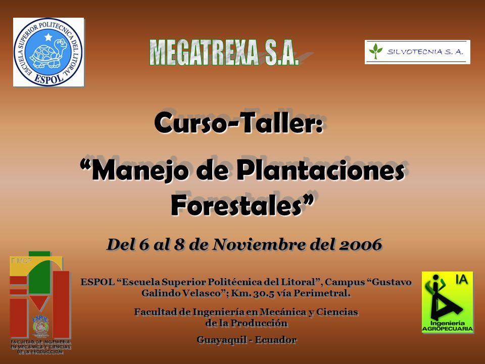 Manejo de Plantaciones Forestales