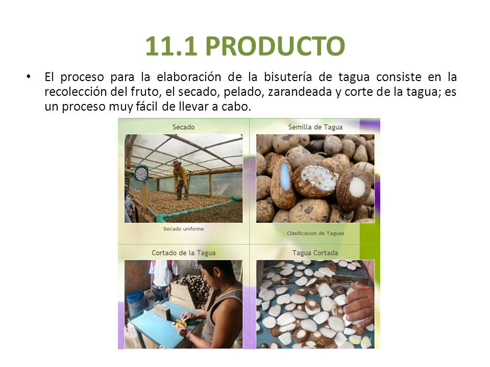 11.1 PRODUCTO