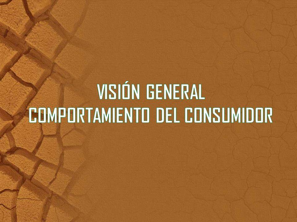 VISIÓN GENERAL COMPORTAMIENTO DEL CONSUMIDOR