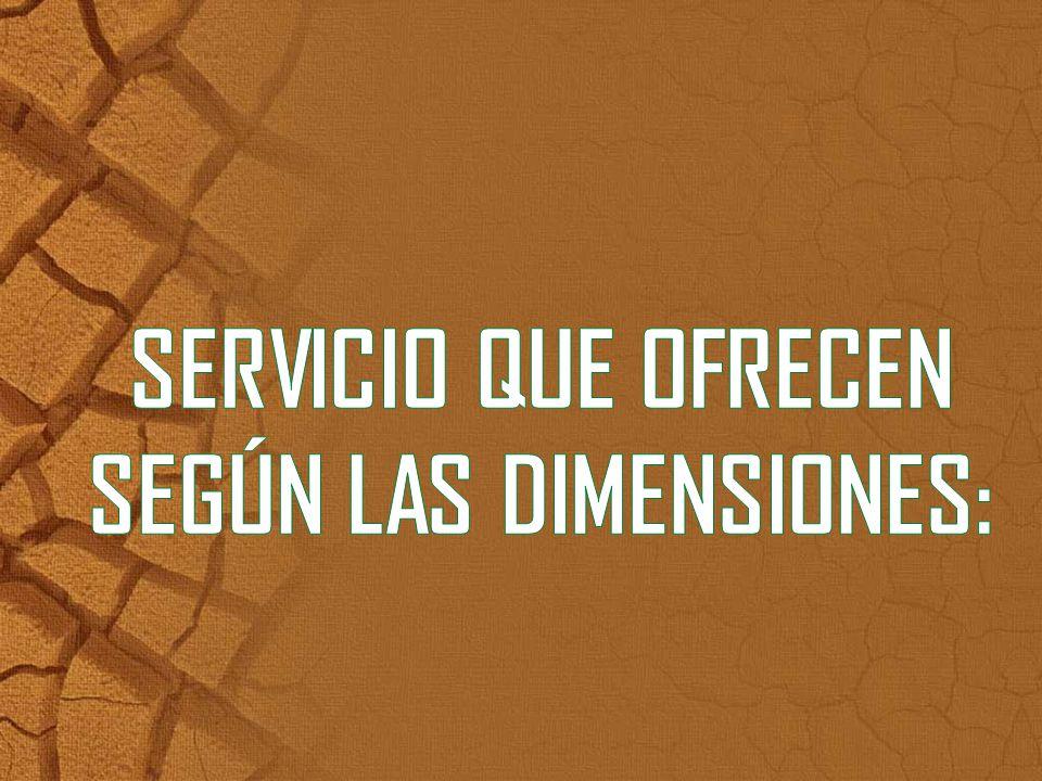 SERVICIO QUE OFRECEN SEGÚN LAS DIMENSIONES: