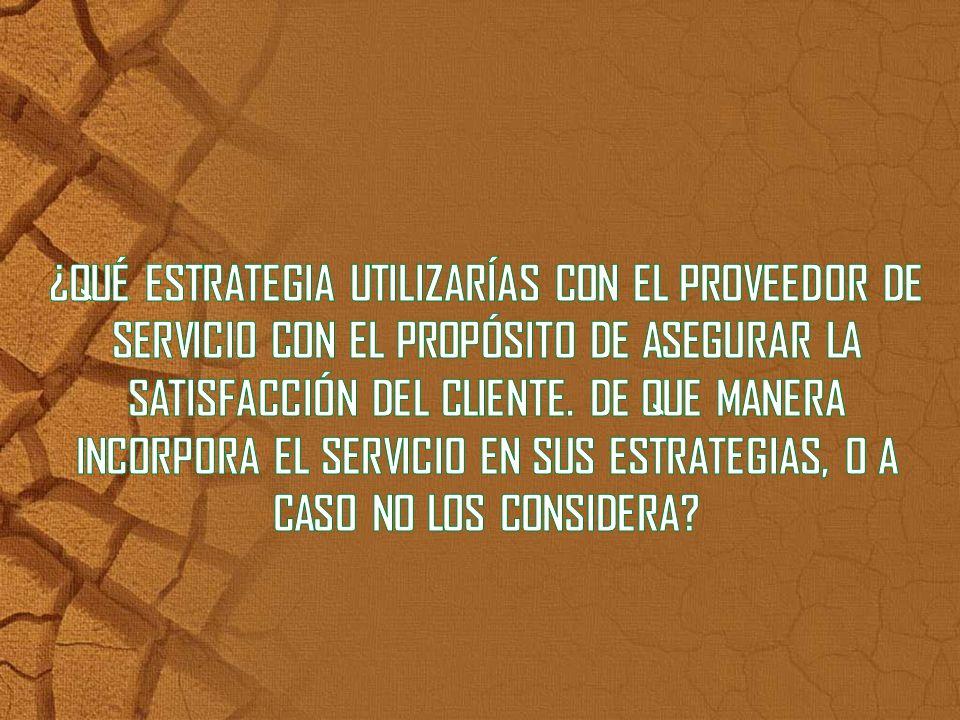 ¿QUÉ ESTRATEGIA UTILIZARÍAS CON EL PROVEEDOR DE SERVICIO CON EL PROPÓSITO DE ASEGURAR LA SATISFACCIÓN DEL CLIENTE.