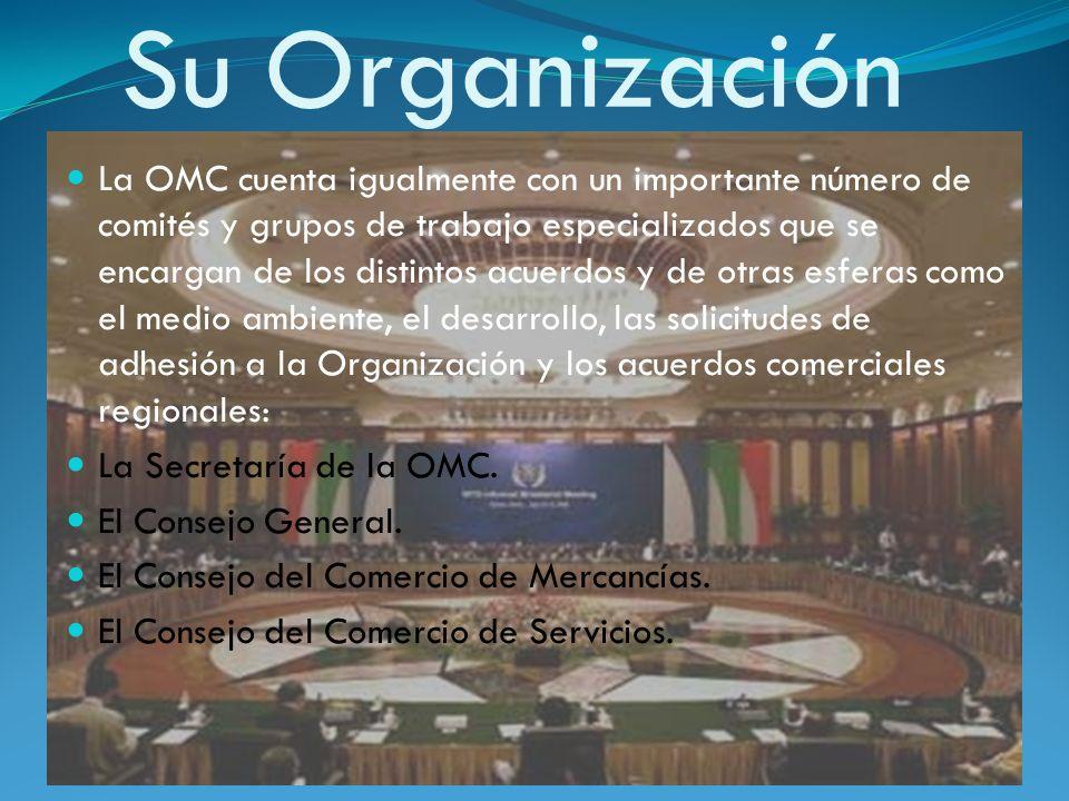 Su Organización