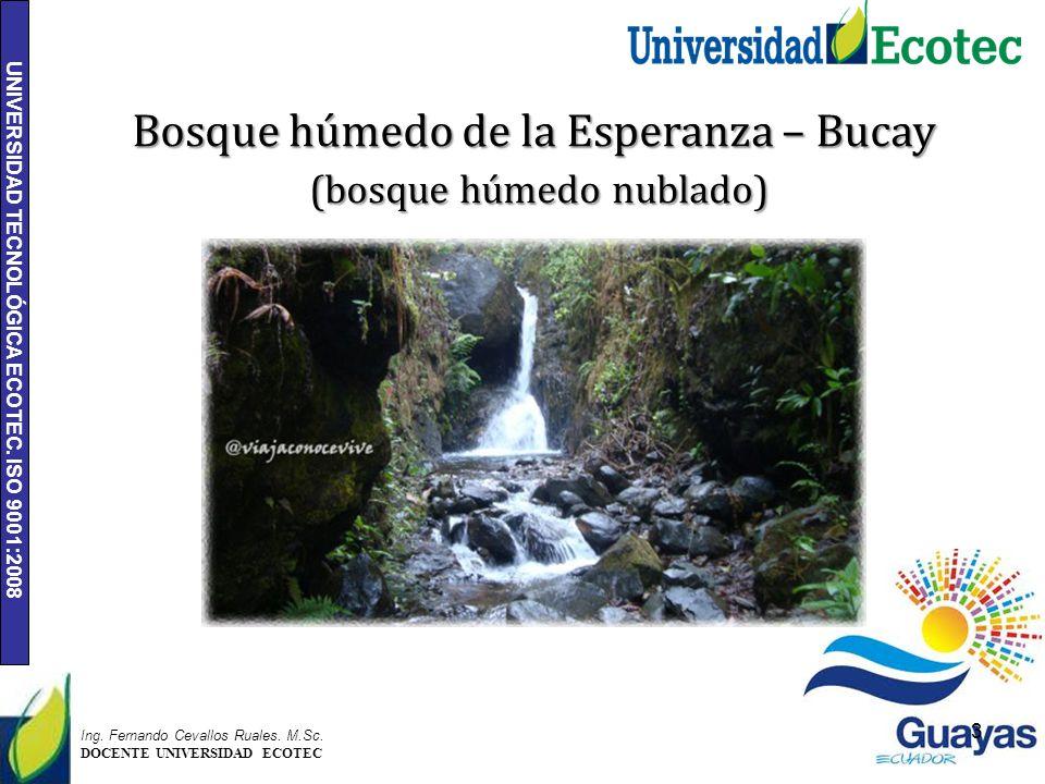 Bosque húmedo de la Esperanza – Bucay (bosque húmedo nublado)