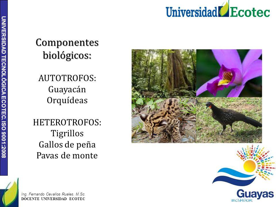 Componentes biológicos: