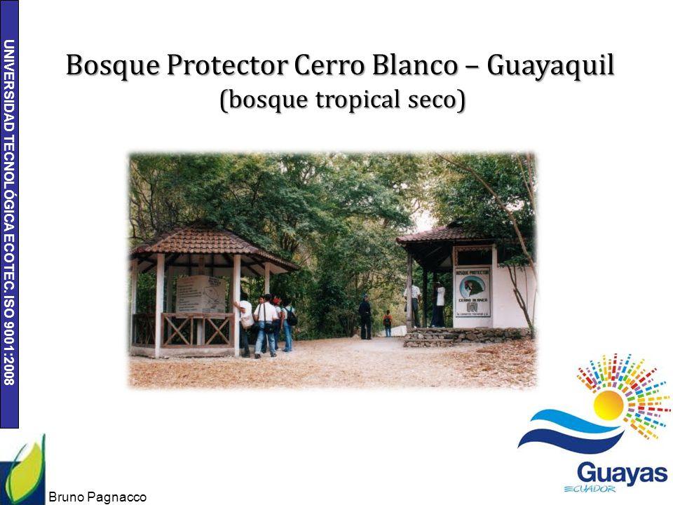 Bosque Protector Cerro Blanco – Guayaquil