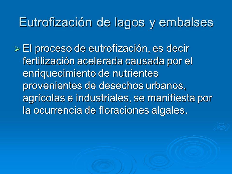 Eutrofización de lagos y embalses