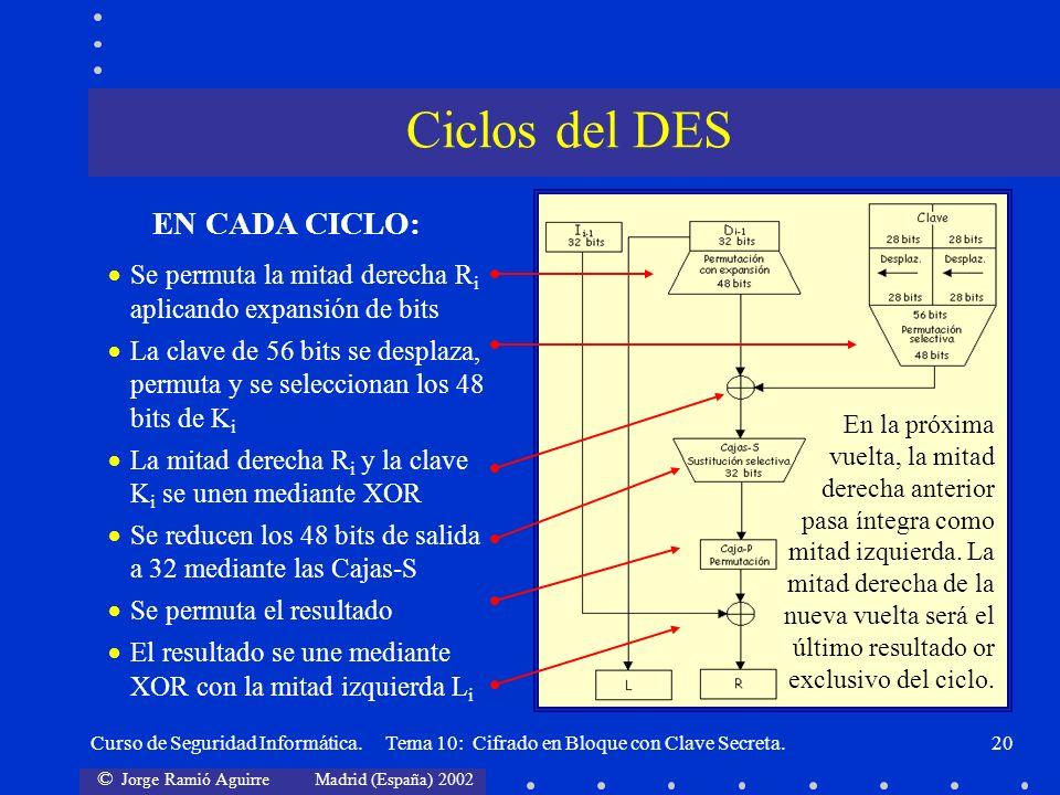 Ciclos del DES EN CADA CICLO: