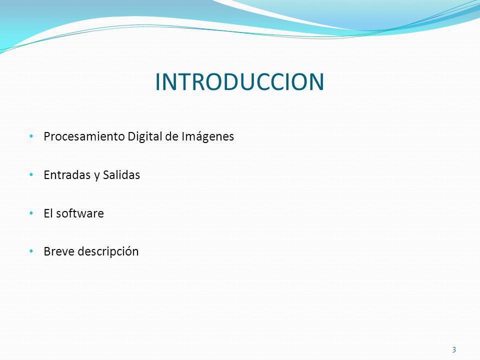 INTRODUCCION Procesamiento Digital de Imágenes Entradas y Salidas