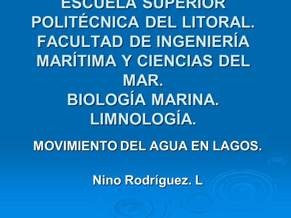 MOVIMIENTO DEL AGUA EN LAGOS. Nino Rodríguez. L