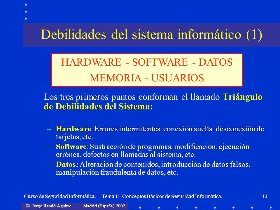 Debilidades del sistema informático (1)