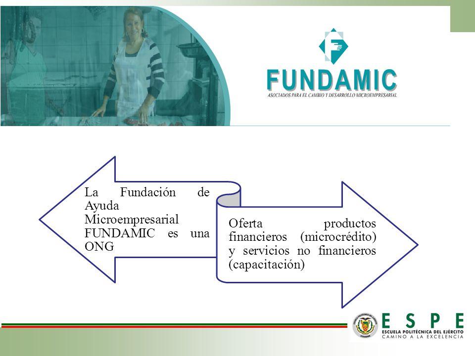 La Fundación de Ayuda Microempresarial FUNDAMIC es una ONG