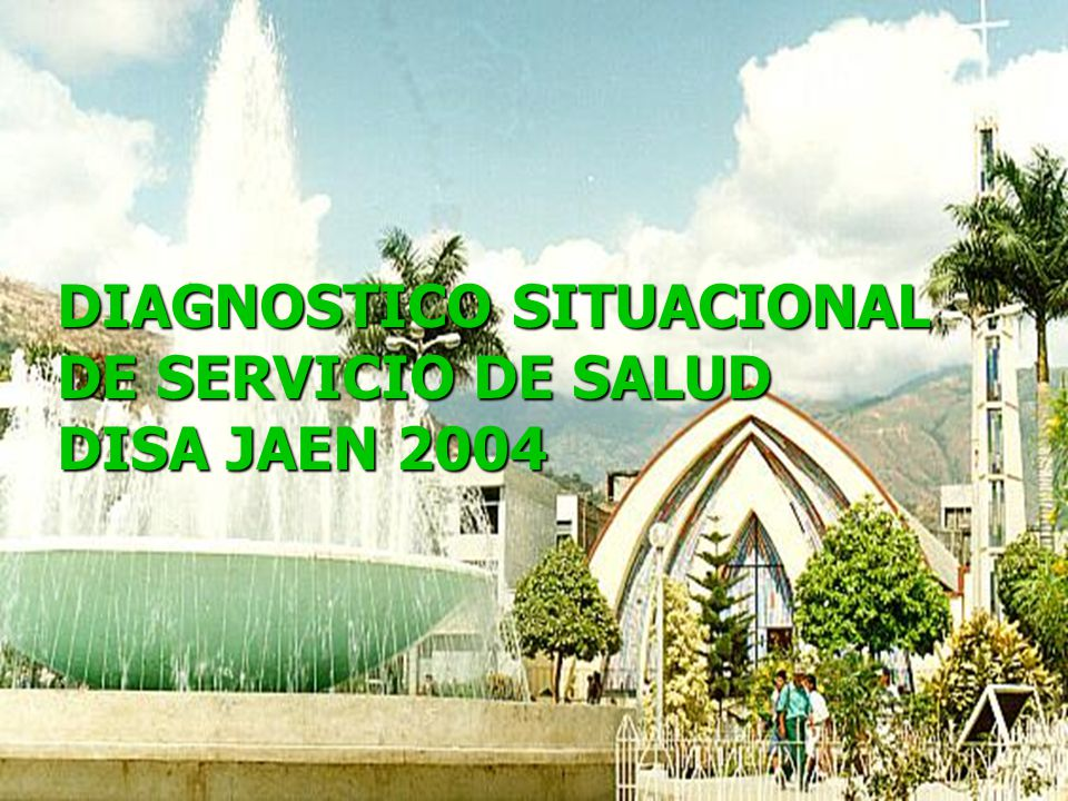 DIAGNOSTICO SITUACIONAL DE SERVICIO DE SALUD DISA JAEN 2004