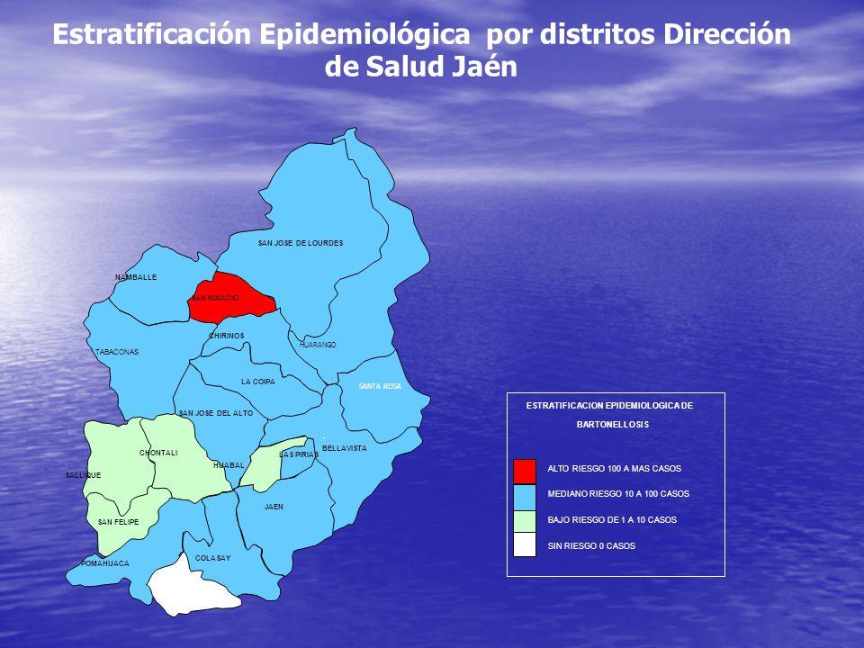 Estratificación Epidemiológica por distritos Dirección de Salud Jaén