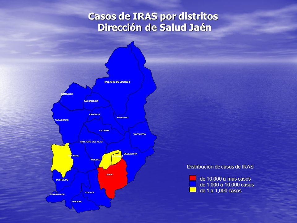 Casos de IRAS por distritos Dirección de Salud Jaén