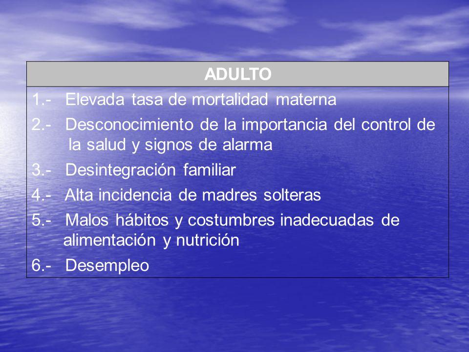 ADULTO 1.- Elevada tasa de mortalidad materna. 2.- Desconocimiento de la importancia del control de la salud y signos de alarma.